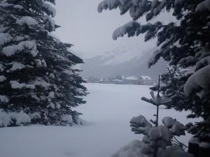 Um Schnee und Weihnachtsbaum müssen Sie sich schon selber kümmern. Wir haben nur Geschenketipps fürs Fest.