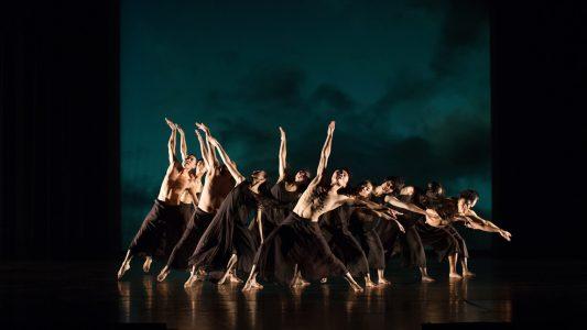"""""""Cage Birds"""", die Choreographie von Arthur Kuggeleyn Bild: Purple Star"""